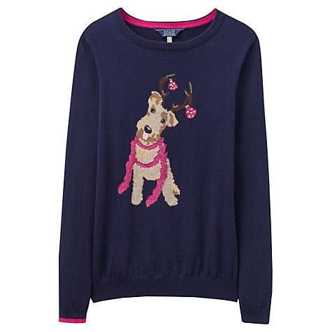 joules festive dog jumper